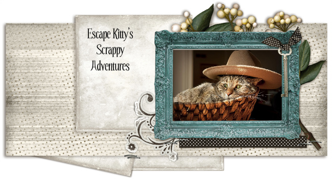 Escape Kitty&#39;s Scrappy Adventures