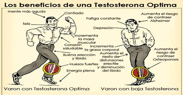 Disfun o er til ejacula o precoce - Alimentos con testosterona ...