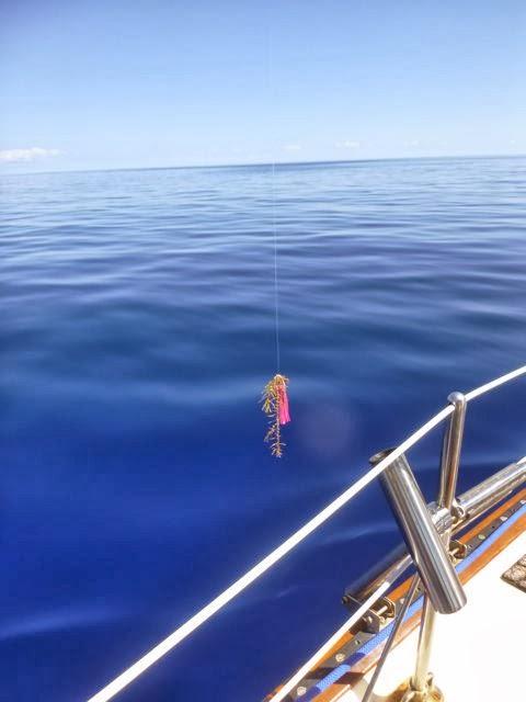 cruising destinations cruising lifecruising provisioning exuma bahamas