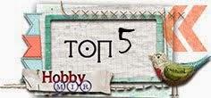 Я в ТОП-5 блога Hobby MIR