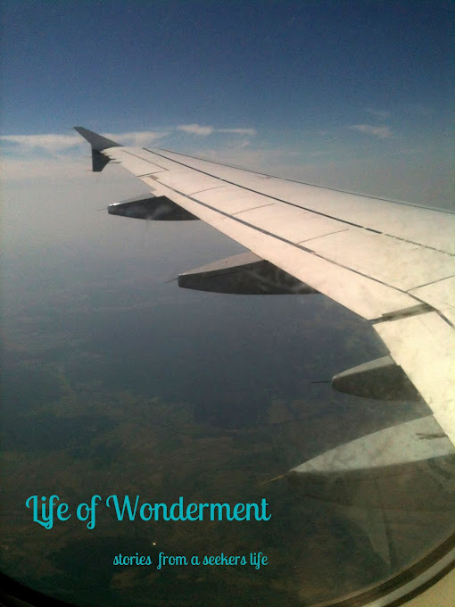 The Wonderment of LIfe