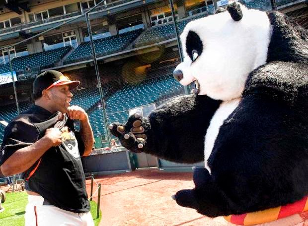 Is The Kung-Fu Panda Coming East To Boston?