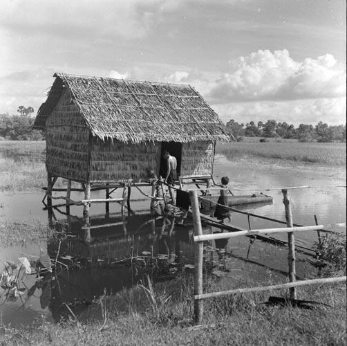 Vie rurale à Siem Reap en 1950