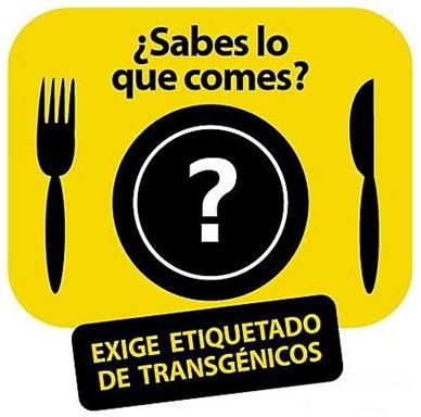 Lo bueno y lo malo de los alimentos transgénicos