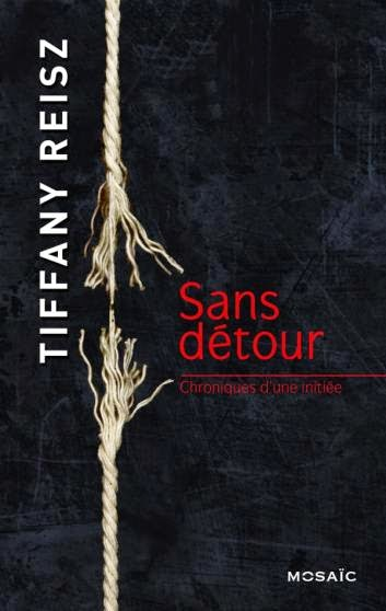 http://www.unbrindelecture.com/2014/11/chroniques-dune-initiee-tome-3-sans.html