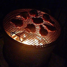 Grilling chicken over the fire pit
