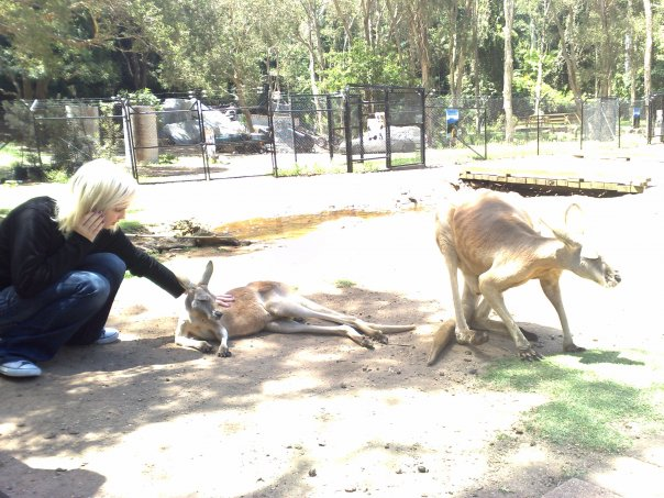 Currumbin Wildlife Sanctuary, Queensland, Australia