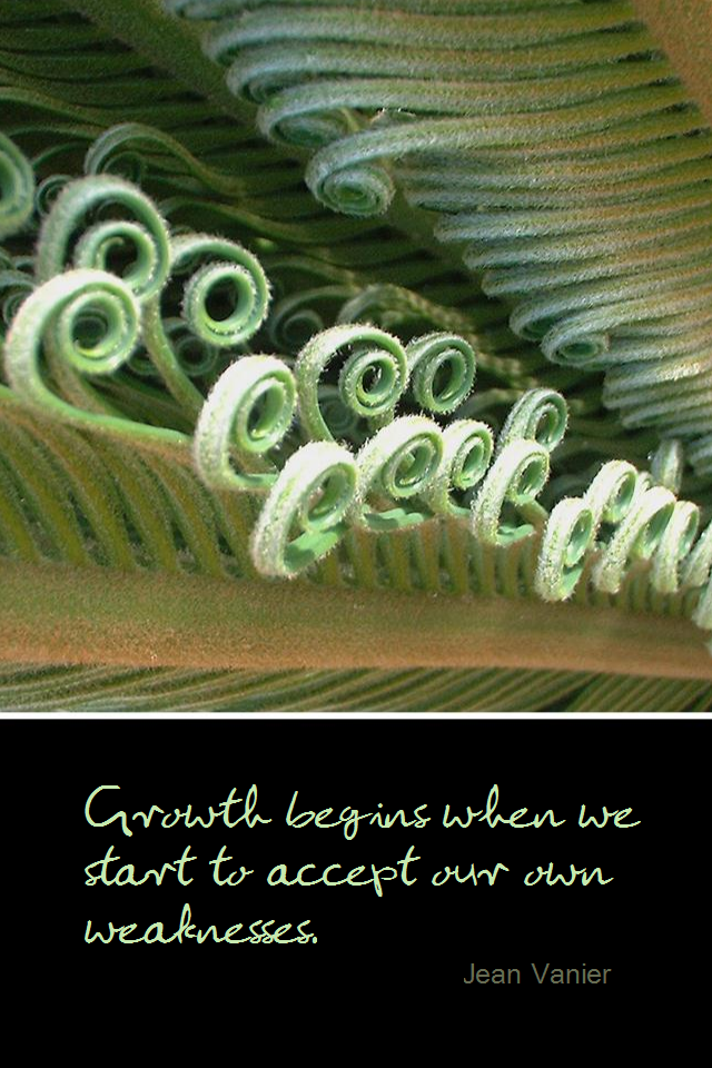 visual quote - image quotation for GROWTH - Growth begins when we start to accept our own weaknesses. - Jean Vanier