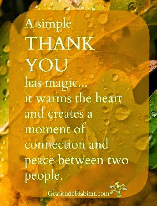 """A simple THANK YOU has magic... it warms the heart and creates a moment of connection and peace between two people."" Picture of leaves with water drops on them. GratitudeHabitat.com"
