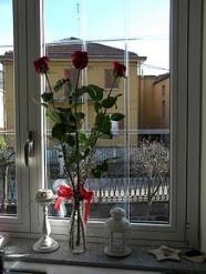 Alla mia finestra