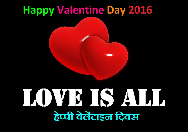 Valentine Day Shayari For Girlfriend Whaysapp Status SMS In Hindi 2016