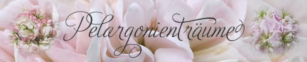 Hier gibt´s tolle Pelargonien