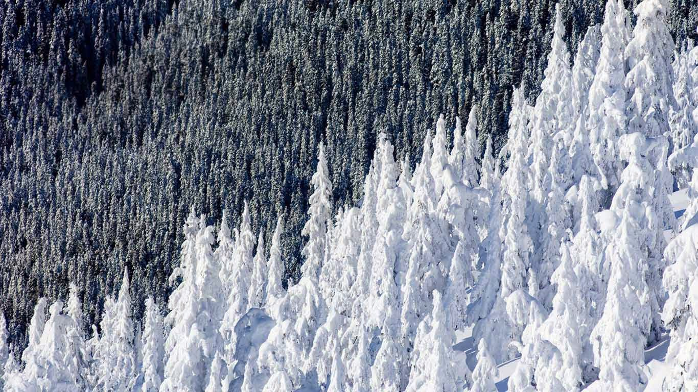 Whistler Mountain in British Columbia, Canada (© Phil Tifo/Tandem Stills + Motion) 376