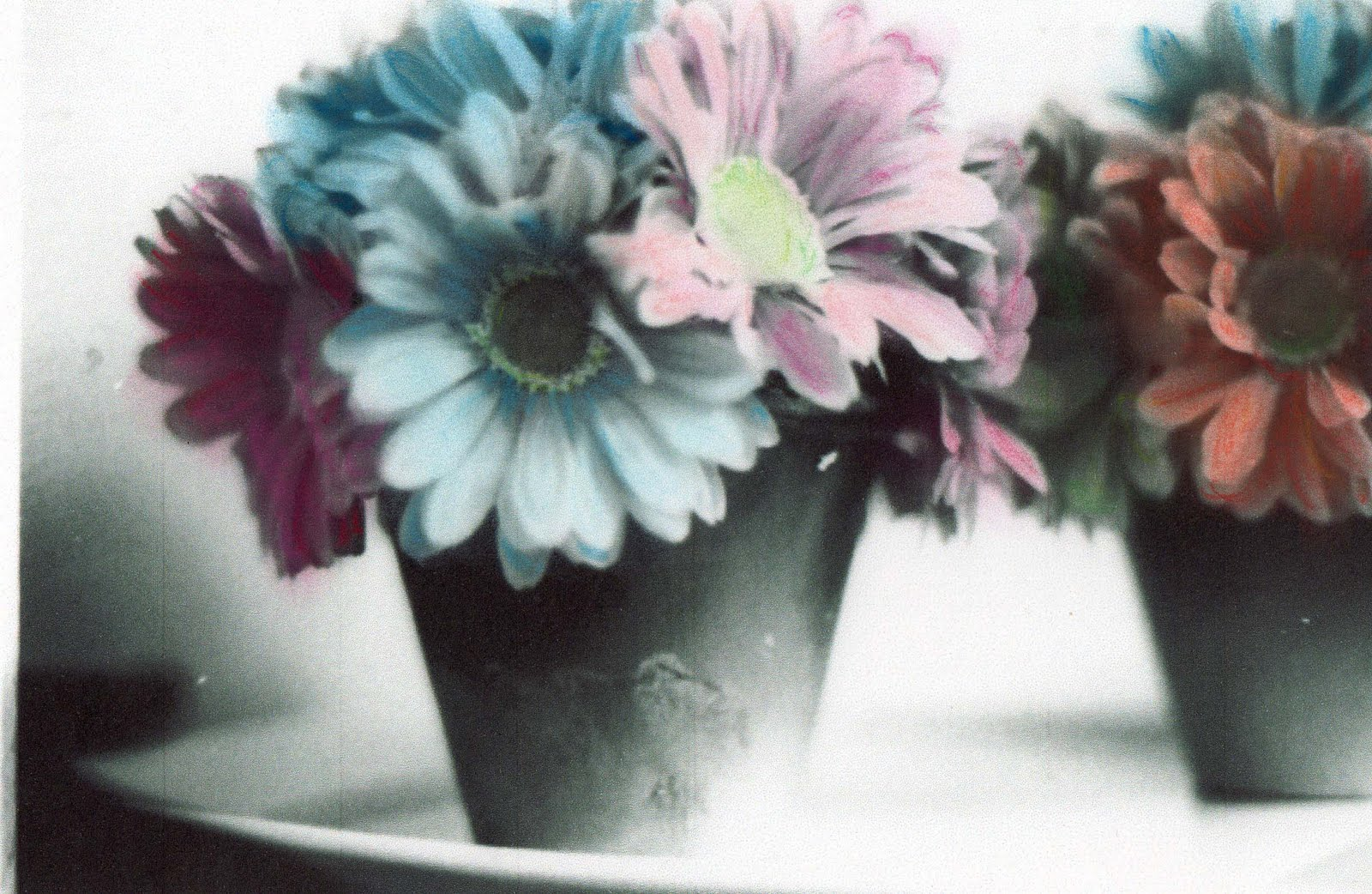 Picture To Hand Color Because I Really Liked The Flowers Since Were Focus Of Decided Leave Pots Black And White