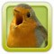 https://itunes.apple.com/de/app/vogelstimmen-trainer-nature/id311042698?mt=8