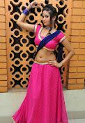 Shreya Vyas photos at Bengal Tiger audio-thumbnail-11