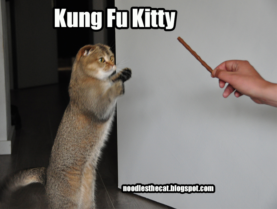 Kung Fu Kitty Movie free download HD 720p