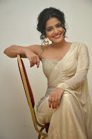 Vishkha Sing in Lvoely Cream Saree and Blouse Stunning Beauty Must See Pics
