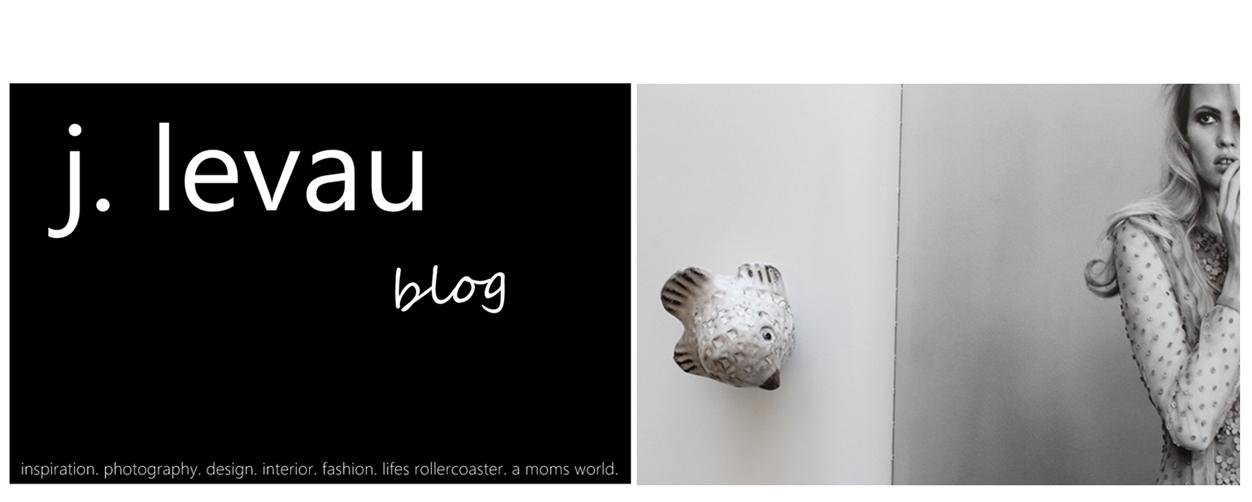 j. levau blog