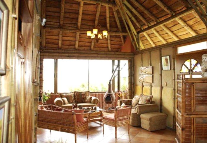 Indoor Bamboo Livingroom Modern Design House