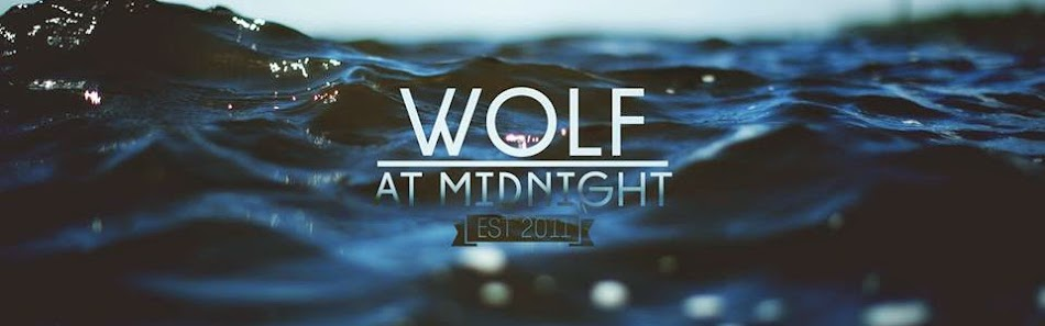 Wolf at Midnight