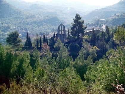 El conjunt de Sant Pere de Vallhonesta