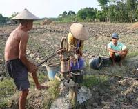 Musim Kemarau Petani di Pacitan Kesulitan Air