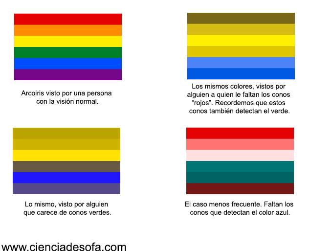 Eres daltónico? – Ciencia de Sofá
