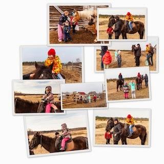 Конные прогулки с детьми в Тверской области
