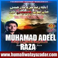 http://ishqehaider.blogspot.com/2013/11/adeel-raza-nohay-2014.html
