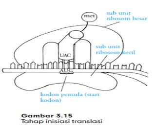 inisiasi dan translasi