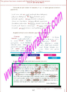 6.Sinif  Turkce Doku Yayinlari Ogrenci Calisma Kitabi Sayfa 147