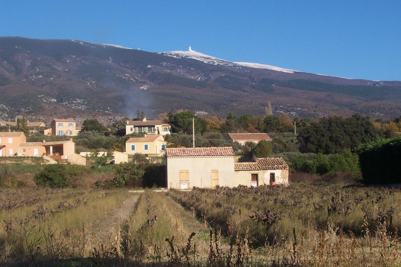 La maison du faucon le mont ventoux for Maison du mont