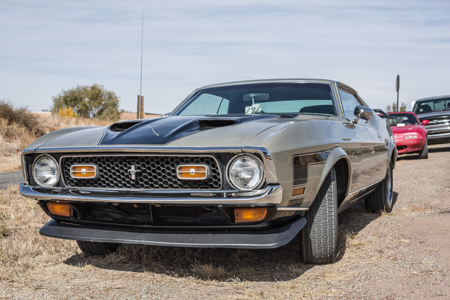 the street peep 1971 ford mustang mach 1. Cars Review. Best American Auto & Cars Review