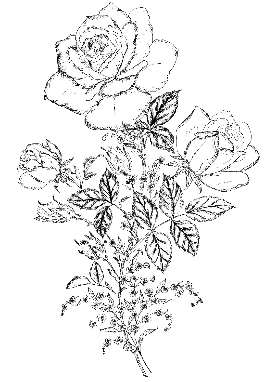 flowerdesign4.jpg (1077×1557) | Woodburning Pyrography and designs ...