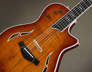 Taylor-Guitars-guitarra-T5z