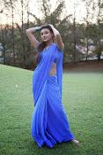 Neelam Upadhyay pics in Blue saree-thumbnail-19