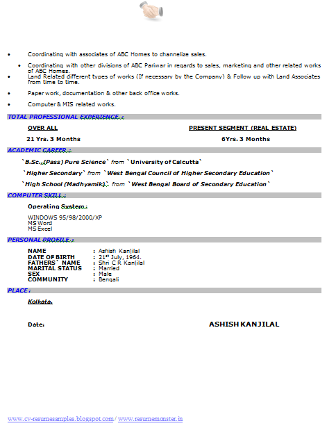 download resume format here - Bsc Computer Science Resume Doc