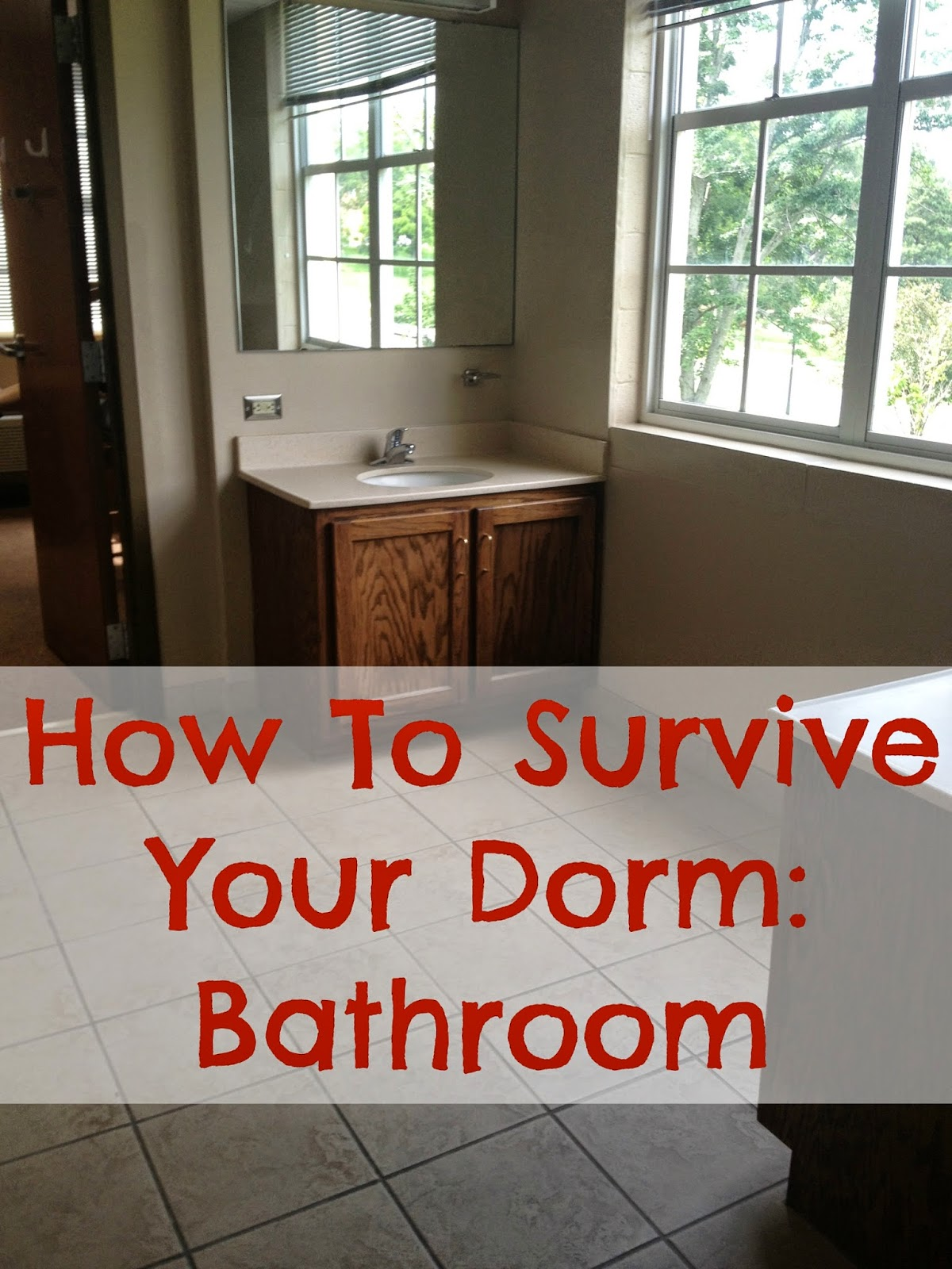 my life as hayden how to survive your dorm room bathroom how to survive your dorm room bathroom
