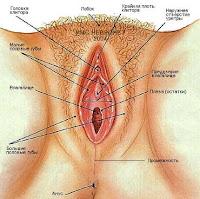 уретральная мастурбация