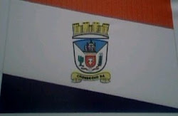 BANDEIRA DO MUNICIPIO DE CHORROCHÓ