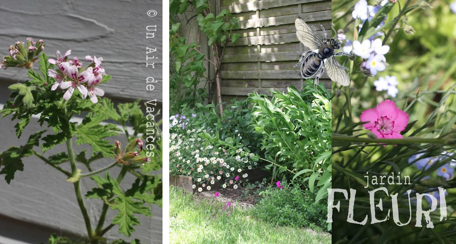 Un air de vacances jardin fleuri for Organiser un jardin fleuri