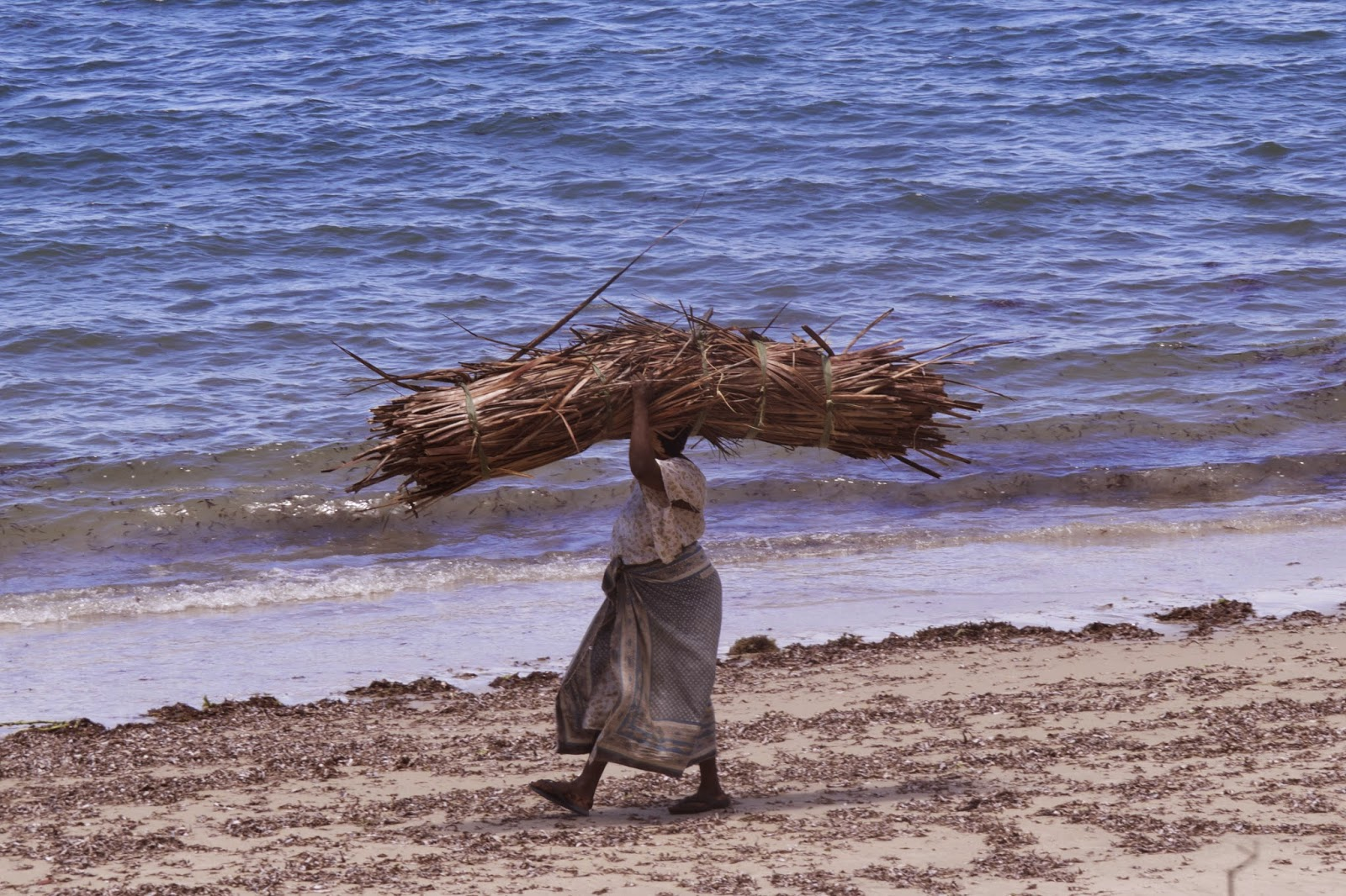 Woman carrying firewood home Pangani Tanzania