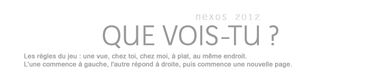 QUE VOIS-TU ? nexos 2012