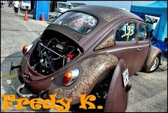 FREDY - K