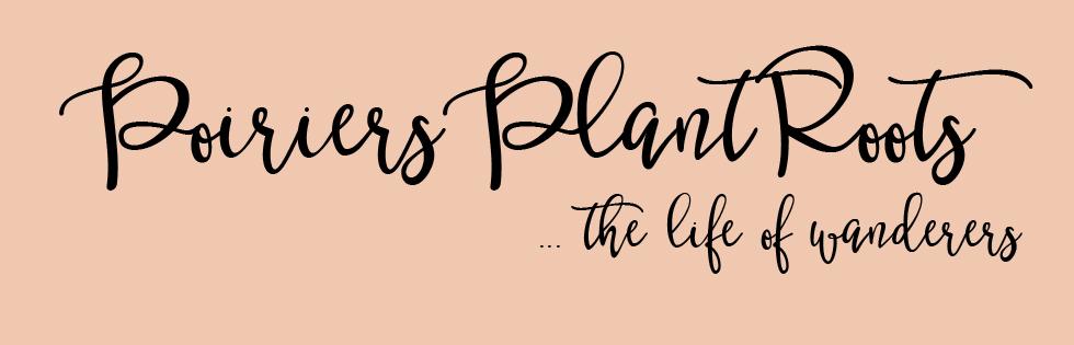 Poiriers Plant Roots