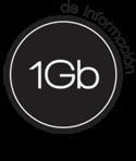 1gb de información