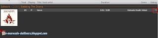 Une chanson affichée dans la playlist de Foobar2000