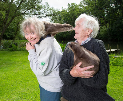 Daphne Neville with Rudi and Martin Neville with Belinda - their tame otters