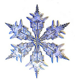 The Snowflake Project